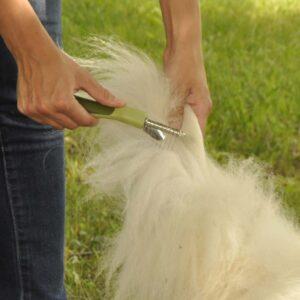 SAFARI Dematting Comb