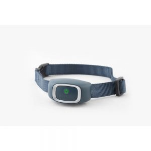 PETSAFE Bark Collar