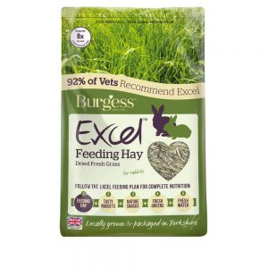 BURGESS EXCEL Feeding Hay Dried Fresh Grass, 1kg