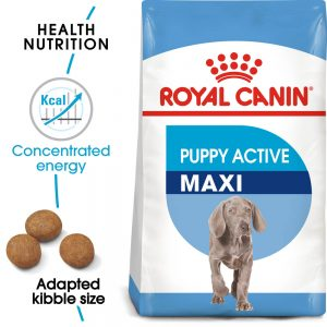 ROYAL CANIN Royal Canin Maxi Puppy Active 15kg (Special Order)
