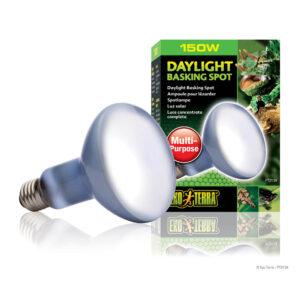 EXO TERRA Day Glo R25 150w Basking Spot Lamp