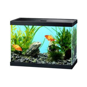 CIANO Aqua 15 Aquarium Black