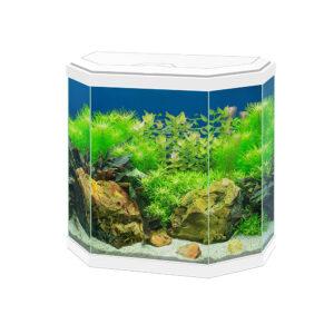 CIANO Aqua 30 Aquarium 25-Litre White