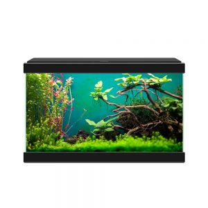 CIANO Aqua 20 Aquarium 17-litre LED Black