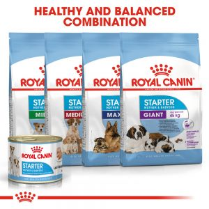 ROYAL CANIN Starter Mother & Babydog Can 195g