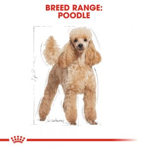 ROYAL CANIN Poodle Adult Pouch, 85g