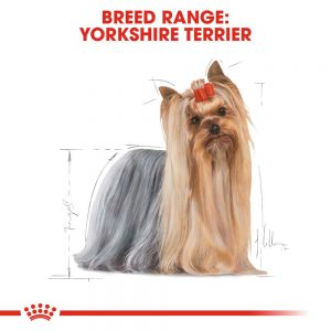 ROYAL CANIN Yorkshire Terrier Adult Pouch, 85g