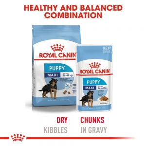 ROYAL CANIN Maxi Puppy Gravy Pouch, 140g