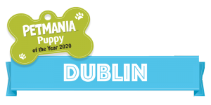 Petmania Puppy of the Year Dublin