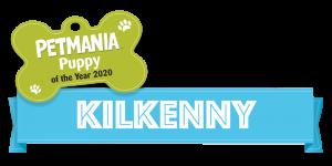 Petmania Puppy of the Year Kilkenny