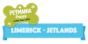 Petmania Puppy of the Year Limerick Jetlands