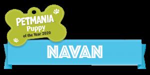 Petmania Puppy of the Year Navan