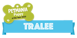 Petmania Puppy of the Year Tralee