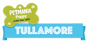 Petmania Puppy of the Year Tullamore