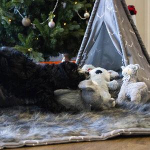 ROSEWOOD Plush Llama Toy 14x21cm, Grey