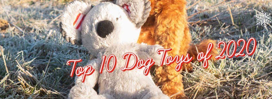 Top 10 Dog Toys for Christmas 2020
