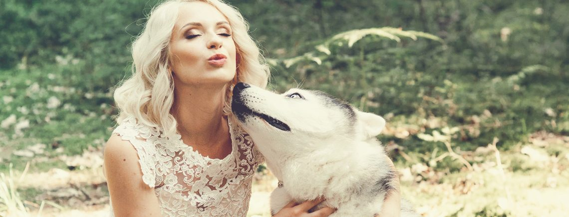 bride and her huskey dog in a photoshoot on her wedding day