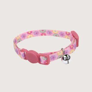 kitten accessories