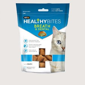 cat dental care
