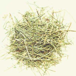 hay, straw, bedding