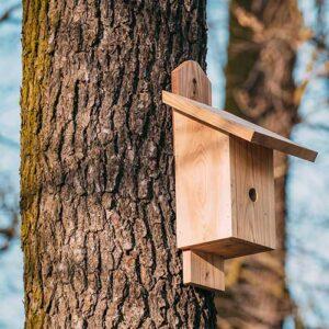 nest box for garden bird