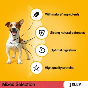 PEDIGREE Mixed Selection in Jelly Pouch, Megapack 40 for the price of 36