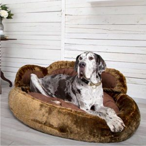 SCRUFFS Grizzly Bear Dog Bed, Super Size