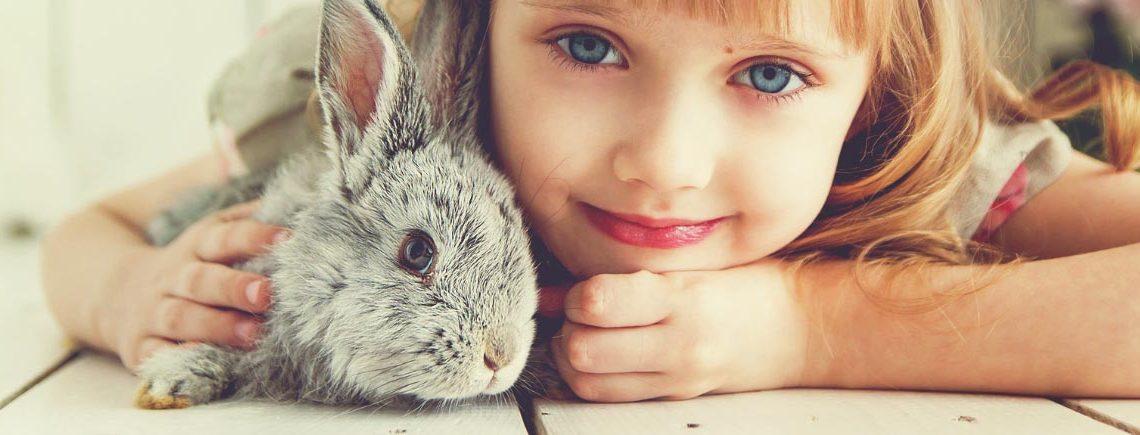 child and bunny rabbit facing camera in a closeup shot